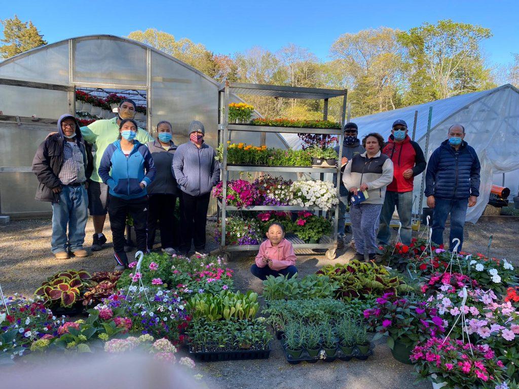"""""""Por un Futuro Mejor"""": La Cooperativa de Trabajadores Agrícolas de Long Island abrió sus puertas al público ayer con un mercado de flores y plantas"""